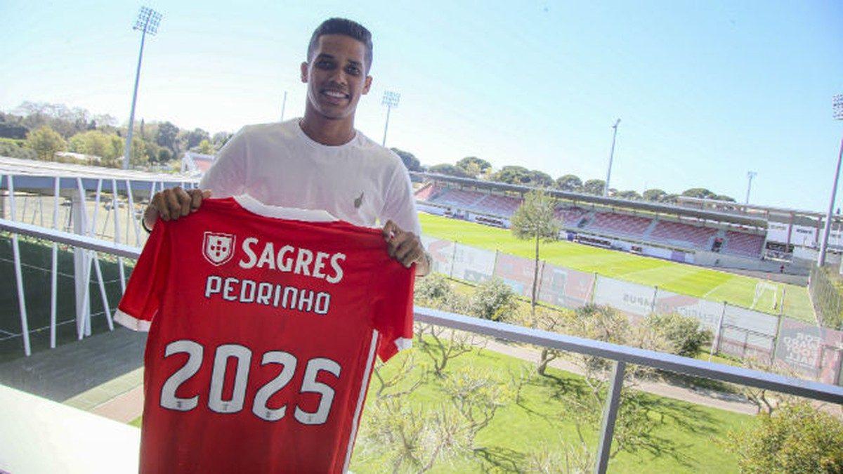 Pedrinho-Benfica